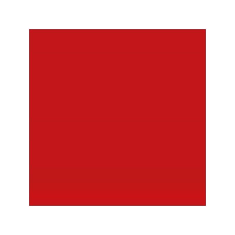 Vinyl Matt Cardinal red