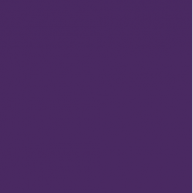 Vinyl Purple passion