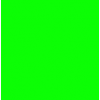 Flock Neon Green